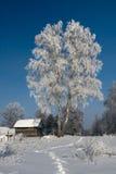 Schnee deckte Häuschen ab Stockfotos