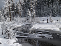 Schnee deckte Nebenfluss ab Stockbild