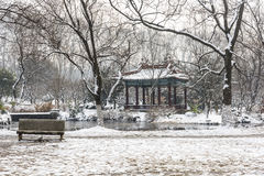 Schnee deckte Pavillion ab Stockfotografie