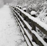 Schnee deckte Pfad ab Stockbild