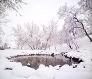 Schnee deckte Riverbank mit Bäumen ab Stockbild