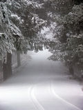 Schnee deckte Straße ab Stockfotos