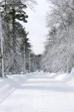 Schnee deckte Straße ab Lizenzfreies Stockbild