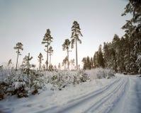 Schnee deckte Straße ab stockfotografie