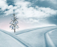 Schnee deckte Straße ab Stockbilder