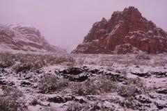 Schnee deckte Wüstenrotfelsen ab Lizenzfreies Stockbild