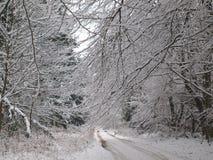 Schnee deckte Weg im Winter ab Lizenzfreie Stockbilder