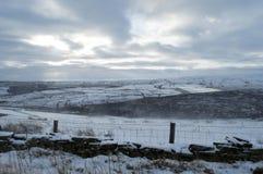 Schnee, der auf Moor treibt lizenzfreies stockfoto
