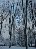 Schnee an der Dämmerung Stockfoto