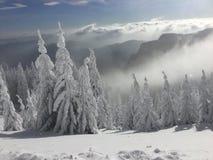 Schnee in der Luft stockfoto