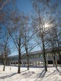 Schnee draußen Lizenzfreies Stockbild
