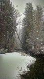 Schnee durch einen Nebenfluss Lizenzfreie Stockfotografie