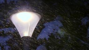Schnee-Fälle auf Stadt-Lampe und Snowcapped Tannen-Baum stock footage