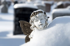 Schnee-Fee Lizenzfreies Stockbild