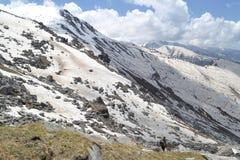Schnee-Feld Lizenzfreie Stockfotos