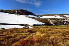 Schnee-Feld-Wiesen-Berglandschaft stockfoto