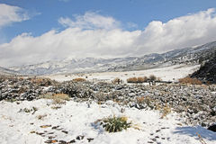 Schnee-Felder Lizenzfreie Stockfotos