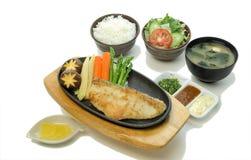 Schnee-Fisch-Steak-Satz Lizenzfreies Stockbild