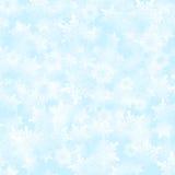 Schnee-Flockenhintergrund Lizenzfreie Stockfotos