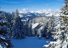 Schnee-Gebirgstal lizenzfreie stockfotos