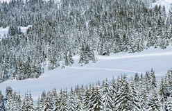 Schnee-Gebirgstal stockbilder
