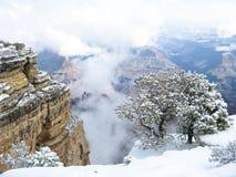 Schnee am Grand Canyon Stockbilder