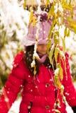 Schnee im Herbst Lizenzfreies Stockfoto
