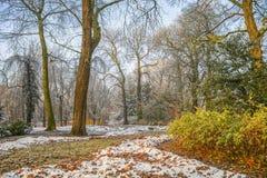 Schnee im Herbstpark Stockbild