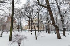 Schnee im Park krakau polen Lizenzfreies Stockbild
