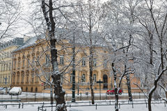 Schnee im Park krakau polen Lizenzfreie Stockbilder