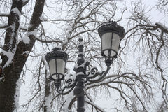 Schnee im Park in Sofia, Bulgarien am 29. Dezember 2014 Lizenzfreie Stockfotos
