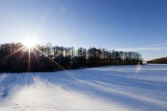 Schnee im Winter Lizenzfreie Stockfotografie