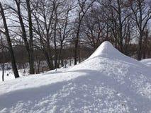 Schnee IMG_4947iPH5 und Bäume ©2017 Paul Light Lizenzfreie Stockfotos