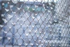 Schnee ist auf dem Gitternetz nach einem Schneesturm in den Zellen lizenzfreie stockfotografie
