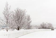 Schnee IV Stockfotografie