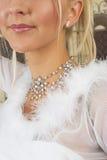 Schnee-Königin #3 lizenzfreies stockfoto