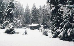Schnee-Kabine Stockfoto