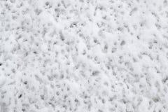Schnee, löst nach Regen Stockbild