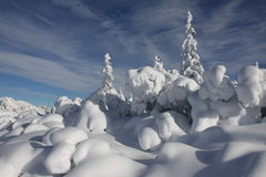 Schnee-Landschaft Lizenzfreie Stockfotografie