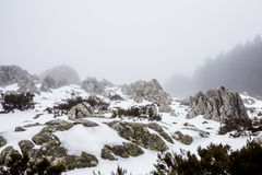 Schnee in Limbara Lizenzfreie Stockfotos