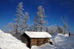 Schnee mit einer Kappe bedeckte öffentliche Toilette Lizenzfreie Stockfotografie
