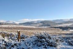 Schnee mit einer Kappe bedeckte Berge Lizenzfreie Stockfotos