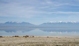 Schnee-mit einer Kappe bedeckte Berge reflektierten sich in Salt Lake Ansicht von der Antilopen-Insel utah stockbilder
