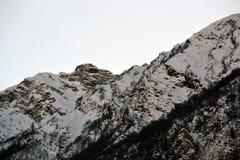 Schnee-mit einer Kappe bedeckte Bergspitze, umfasst mit bloßen Bäumen stockfotografie