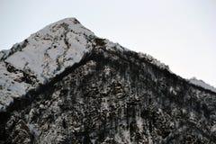 Schnee-mit einer Kappe bedeckte Bergspitze, umfasst mit bloßen Bäumen lizenzfreie stockfotografie