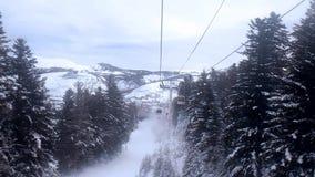Schnee-mit einer Kappe bedeckte Bergspitzen und die Oberteile Tannen schwimmen vor Ihren Augen stock video