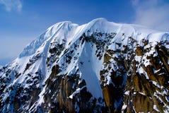 Schnee mit einer Kappe bedeckter Berg im Denali Park Lizenzfreie Stockfotos