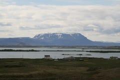 Schnee mit einer Kappe bedeckter Berg in Island Lizenzfreie Stockbilder