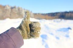 Schnee-mit einer Kappe bedeckter Gebirgserfolg glücklich Stockfotografie