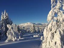 Schnee paradis Stockbild